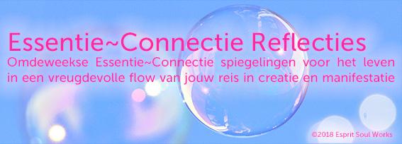 Essentie-Connectie Reflecties frequentiewerk