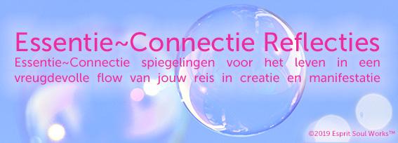 ESW Essentie Connectie Reflecties - verandering