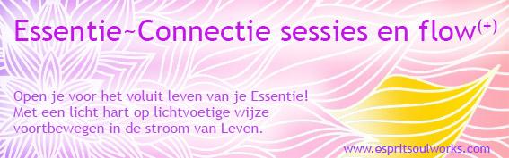 Essentie-Connectie sessies