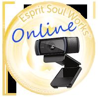 Online sessies via de webcam