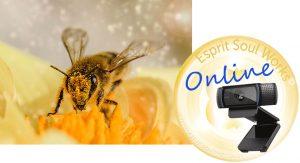 bee-online